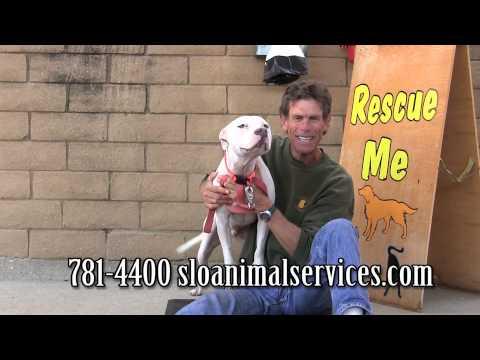 Rescue Me! 04-14-2014