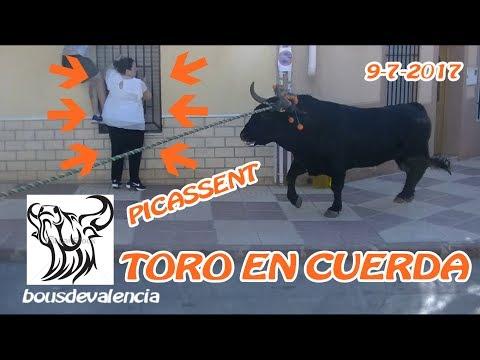 BOUS AL CARRER - PICASSENT (V) 2017 - POR LOS PELOS!!! BOU EN CORDA LA MAREA NARANJA 9-7-2017