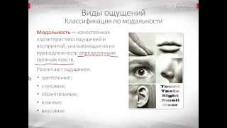видео Ощущение - понятие и классификация. Свойства ощущений в психологии