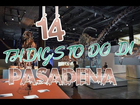 Top 14 Things To Do In Pasadena, Texas