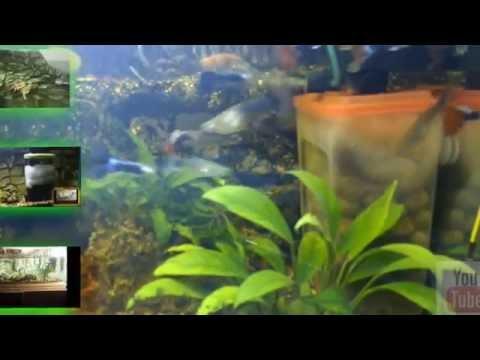 Внутренний фильтр для аквариума своими руками.