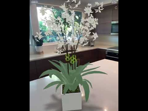Orchid in Augmented Reality (Share link in the description)
