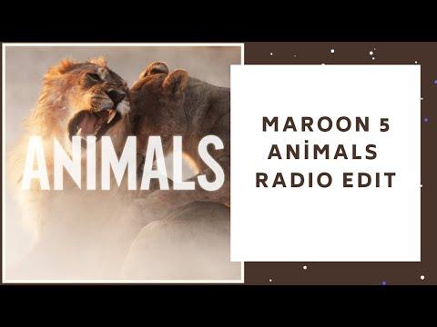 Maroon 5 - Animals (Radio Edit)
