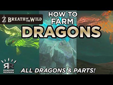 Zelda: Breath Of The Wild - EASY DRAGON FARMING - (All Dragons & Parts!)