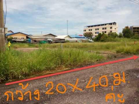ขายที่ดินราคาถูก ไร่ละ 4 ล้าน 8 บาท กรม ที่ดิน บางพลี