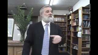 The 13 Principles of Judaism - Reincarnation (Supplement to Principle 11)