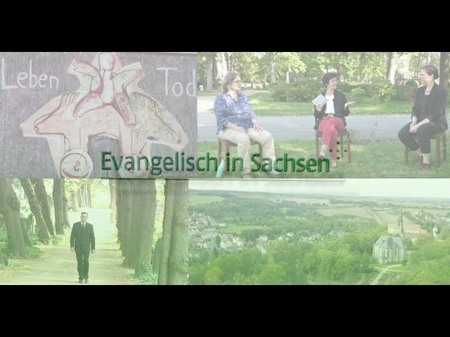 Beitrag im Sachsen-Fernsehen