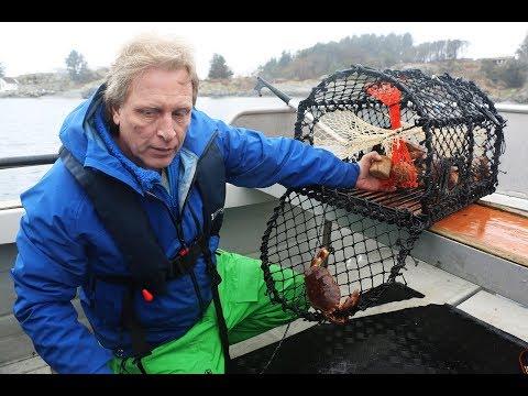 Captain Sig Hansen lanserer nytt og revolusjonerende krabbeagn