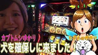 収録ホール=オレンジ春日部店 https://www.p-world.co.jp/saitama/oran...
