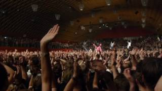 Donots - Room with a view (give me shelter) live