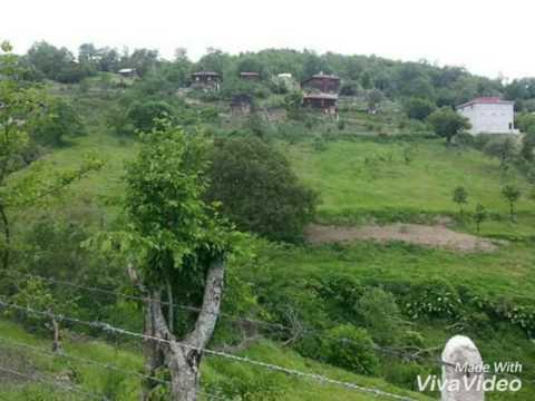 Sinop dikmen serbest köyleri