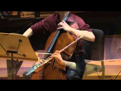 Trio for Flute, Cello, and Piano | Music | 2014 National YoungArts Week