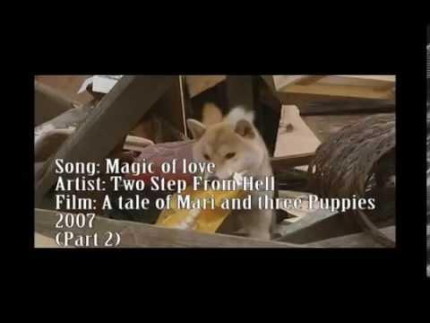 chú chó mary (phần 2) [brucelee trọng]