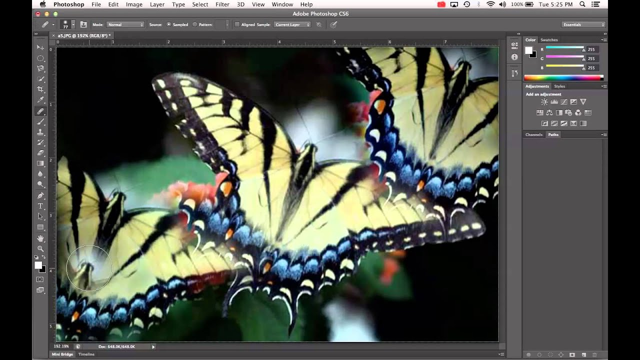 How to Use the Clone Source Panel in Adobe Photoshop ...