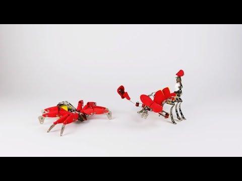 14956 SES Metal crawlies construction set