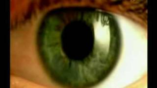 The Miracle in the Eye (6/6)