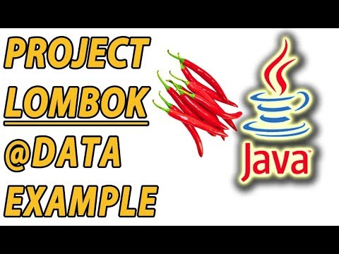 Project Lombok Data Example (Part 5)