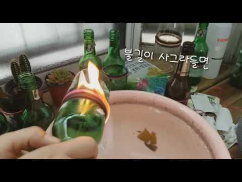 [위키 DIY] 술병으로 다육식물 화분 만들기