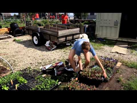 Keep Growing Detroit | Quicken Loans in the Community