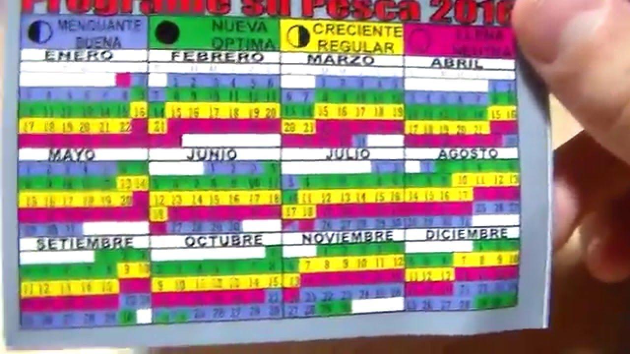 Calendario de pesca 2016 | Caza y Pesca Argentina - YouTube