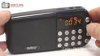 Aibo UN-31 - симпатичный радиоприёмник с SD и USB
