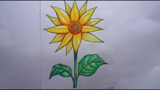 how to draw beautiful sun flower | easy art using pencil  oil pastel