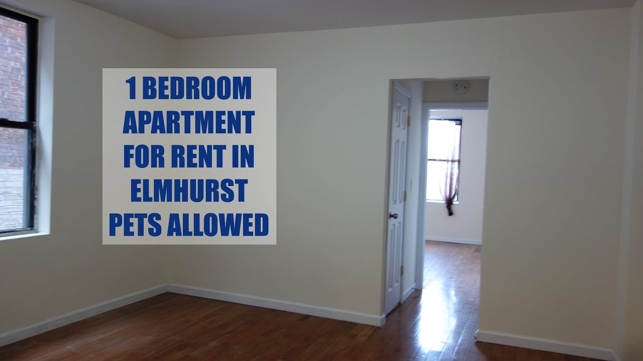 Pet Friendly, 1 Bedroom Apartment For Rent In Elmhurst