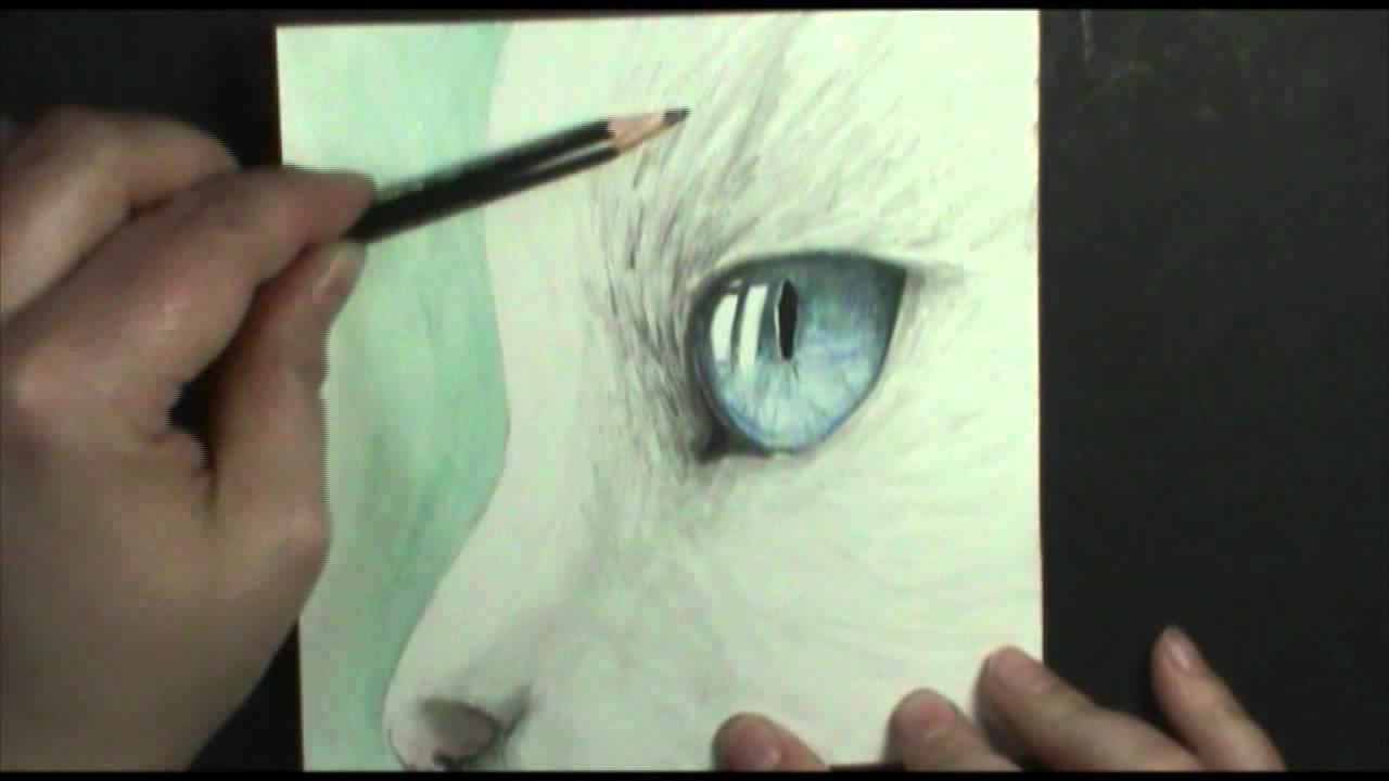 Speed Painting Cat S Eye Youtube