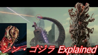 Shin Gojira's Tail Explained (シン・ゴジラ )