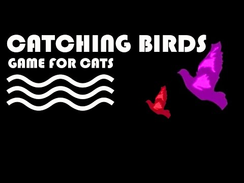 ENTERTAINMENT VIDEO FOR CATS. Cat Game on Screen. Flying Birds Video for Cats to watch.