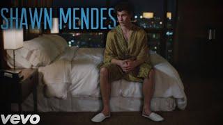 Shawn Mendes, Zedd - Lost In Japan (Original + Remix) Video