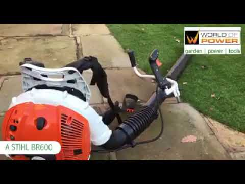 How to Clean Artifical Grass
