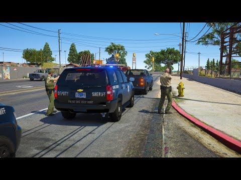 LSPDFR - Day 686 - Live PD Richland County Callouts Part 2