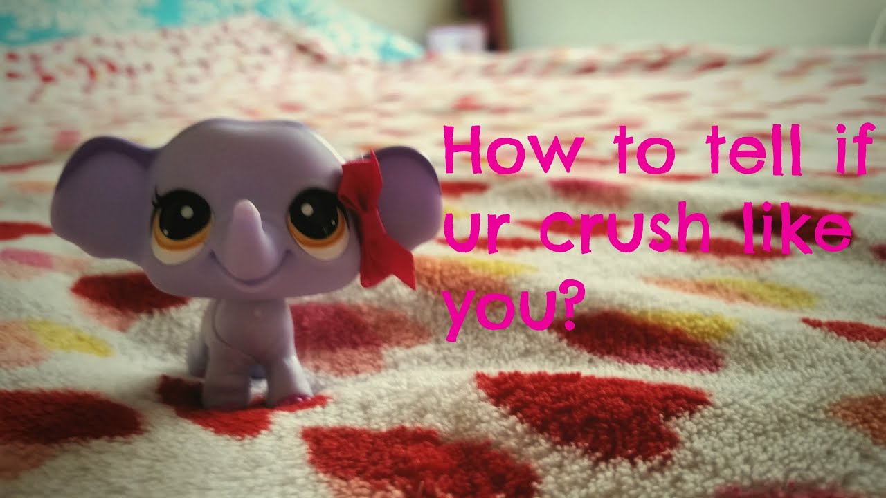 how to know if ur crush likes you