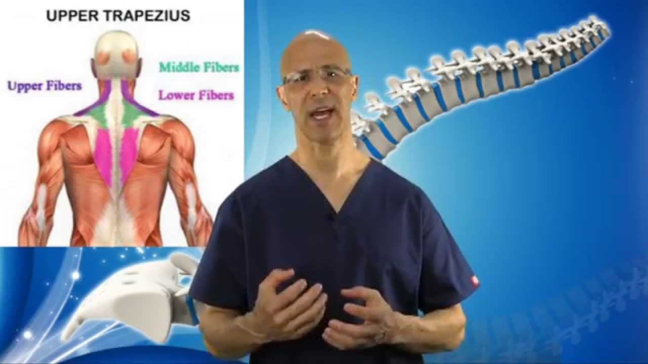 3 Part Exercise To Remove Tight Trapezius Muscle In Neck Neck Pain
