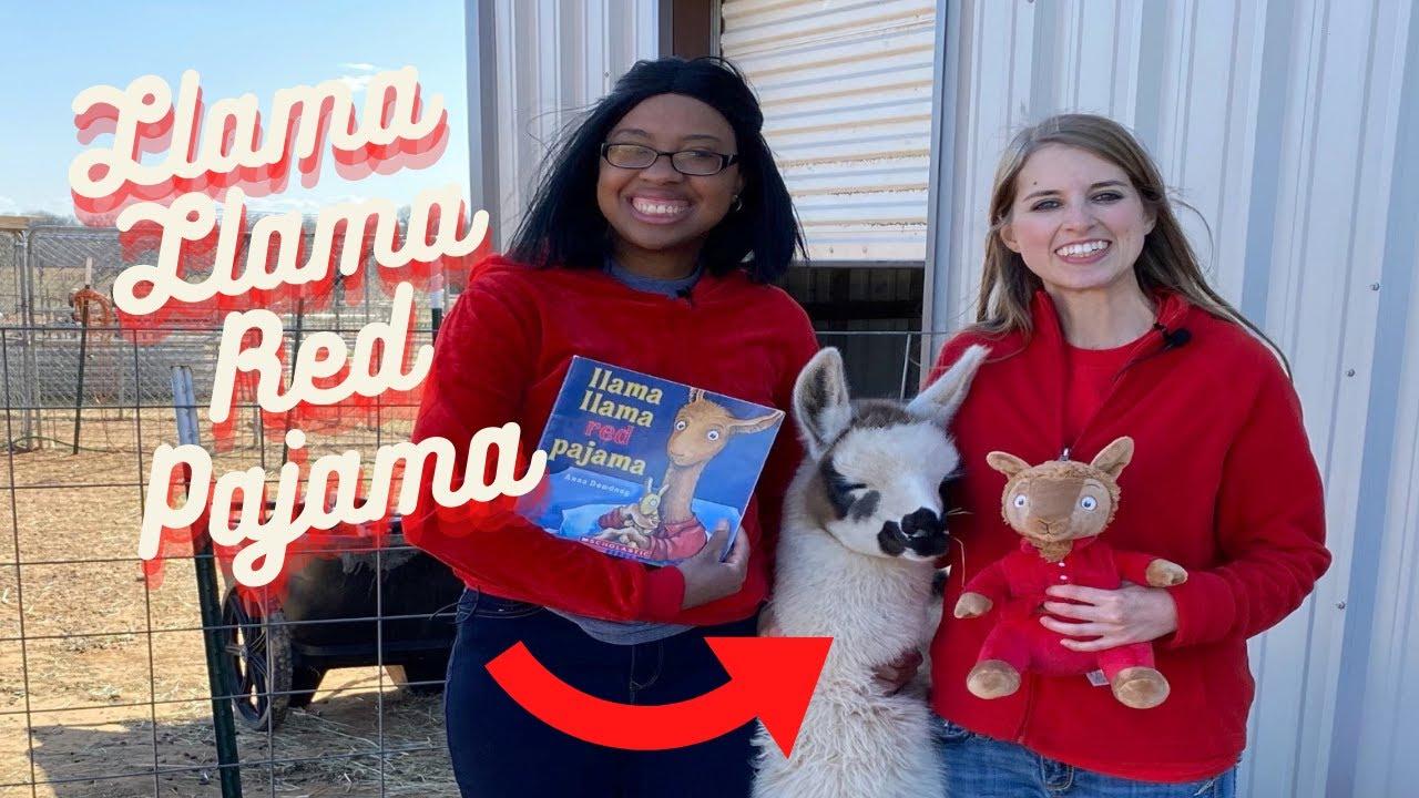 Llama Llama Red Pajama l Anna Dewdney I Llama Farm l Seguin l Kassi Kincaid I Texas I Llama