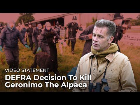Reaction To DEFRA Decision To Kill Geronimo The Alpaca — Chris Packham