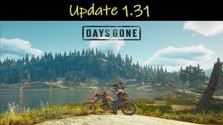 Days Gone | Update 1.31