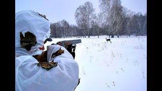 Секреты сибирских охотников или Как охотиться на косулю с подхода