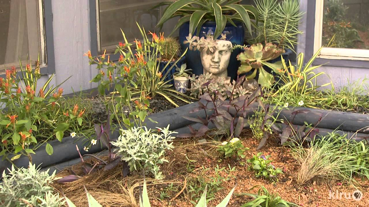 Lose lawn in first garden for much more fun |Lori Daul |Central ...