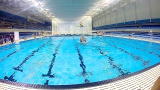 CIBC Pan Am/Parapan Am Aquatics Centre and Field House