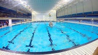 CIBC Pan Am / Parapan Am Aquatics Centre and Field House