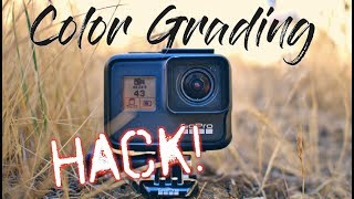 Ultimate GoPro Color Grading Hack! (totally free!)