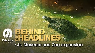 Behind the Headlines - Junior Museum And Zoo Expansion thumbnail