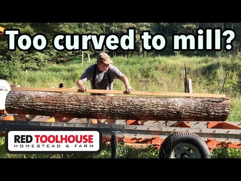 Are Curved Logs Worth Milling?