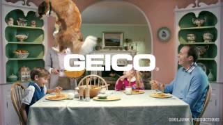 """Edited: Dog in Geico """"unskippable"""" ad"""