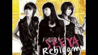 [MP3]Seeya - 눈물의 여왕  眼淚的女王