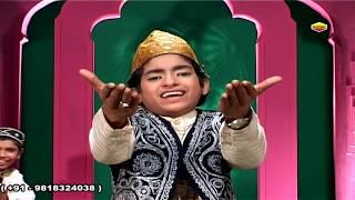 Tan Man Dhan Tere Liya Hai Khwaja || Rais Anis Sabri 2019 Urs Khwaja