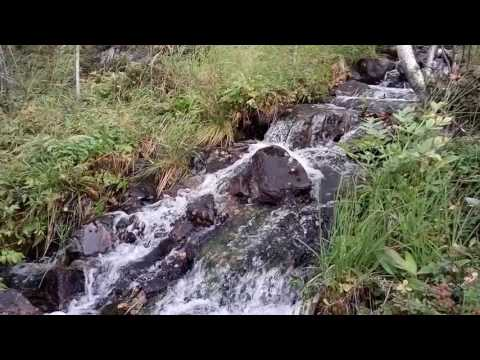 Природа Мурманской области