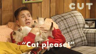 Horror Movie Marathon: Kittens Every Time You Scream   Scaredy Cats
